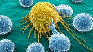 AZUCAR CANCER, nutricion, prevencion, enfermedad