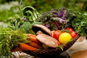 cancer food, nutricion, cura cancer